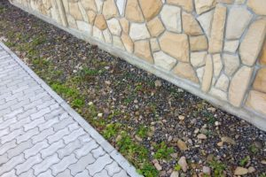 cement-slab-pavement-near-natural-stone-fence-or-wall-min