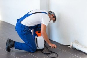 manual-worker-spraying-insecticide-pipe-min